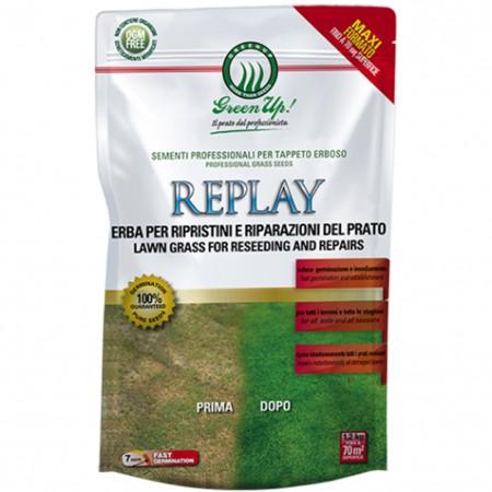 SEMENTI PRATO MISCUGLIO TAPPETI REPLAY KG 1,2 Herbatech