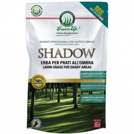 SEMENTI PRATO MISCUGLIO TAPPETI SHADOW KG 1,2 Herbatech
