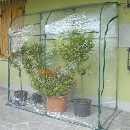 Serra a parete Oleander 1x2xh2,15m Verdemax