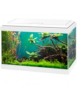 ASKOLL Acquario Aqua 20 bianco 40x20x26 con led e filtro 17 litri