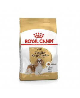 Alimento cane Royal Canin Breed Health Nutrition Cavalier King 1,5kg