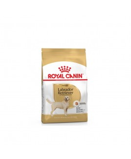 Alimento cane Royal Canin Breed Health Nutrition Labrador 12kg