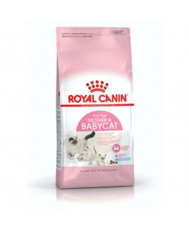 Alimento gatto Royal Canin Feline Health Nutrition Mother and baby cat 4kg