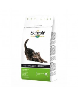 Alimento gatto Schesir Maintenance agnello 400g
