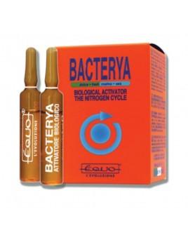 Attivatore di azoto Bacterya Equo 6 fiale da 5 ml