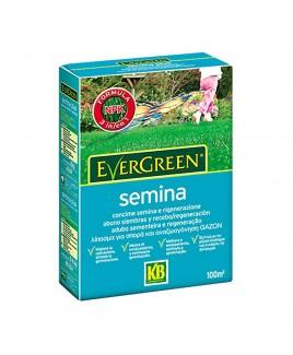 Concime Semina per prato 2kg Evergreen KB