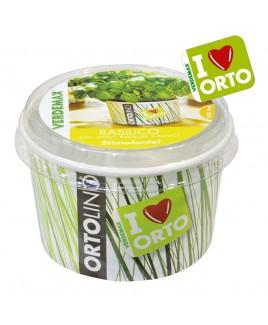 Ortolino Basilico vaso Verdemax V002021