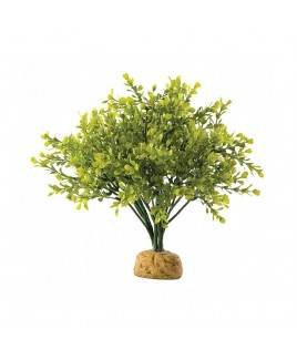 Pianta artificiale Rainforest plants Boxwood Bush medium con base Exo Terra Askoll