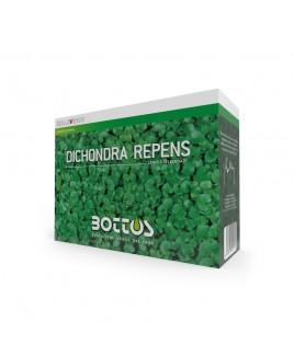 Sementi per prato Zollaverde Dicondra Repens 500g Bottos
