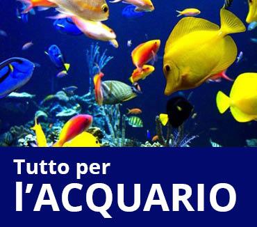 Acquariologia