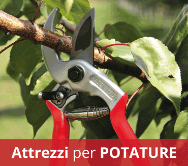 Attrezzi per potature